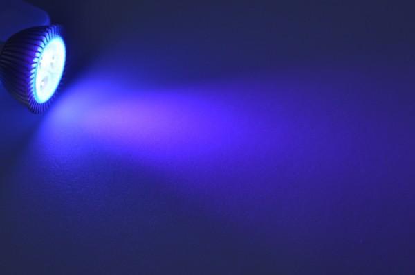 GU5.3 LED-Spot PAR16 LED3x1S53Suv Niedervolt DC-kompatibel (gleichstrom-fähig) Ultraviolett (395 - 405 nm°K) . Einsetzbar im Spannungsbereich: